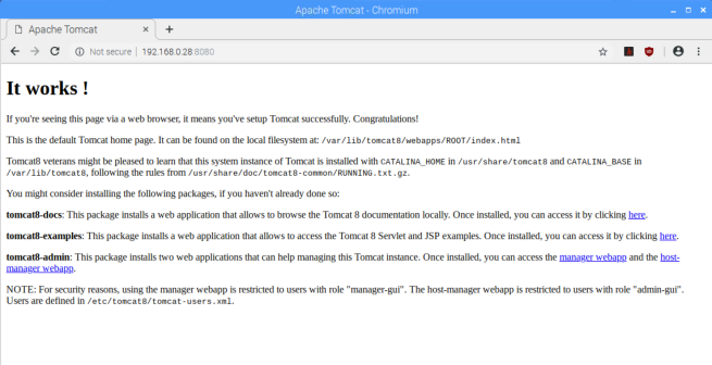"Apache Tomcat is installed and displays the ""It works!"" page"