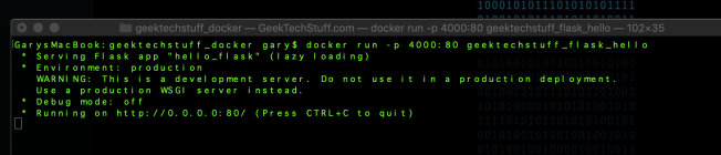 Docker Flask running