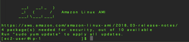 Amazon Linux AMI banner