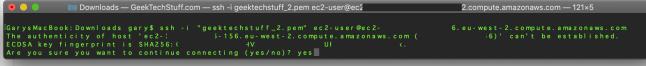 SSH accept connection