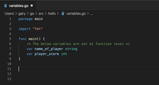 Go variables at Function level
