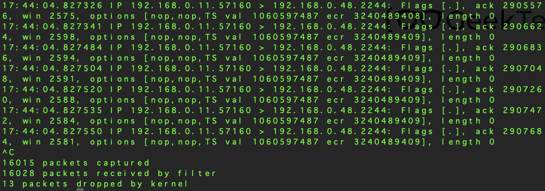 TCPDump (Raspberry Pi)
