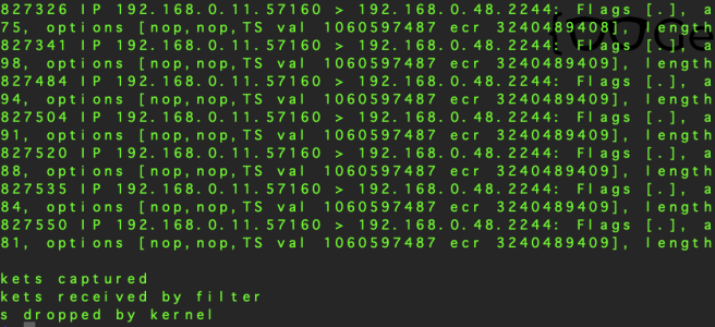 TCP Packet Dump